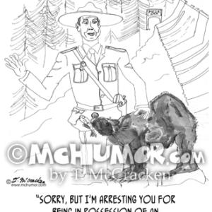 0075 Bear Cartoon1