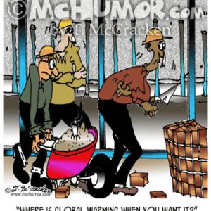 6113 Masonry Cartoon1