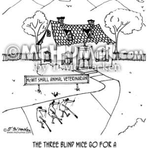 6235 Blind Cartoon1
