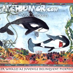 8009H Whale Cartoon1