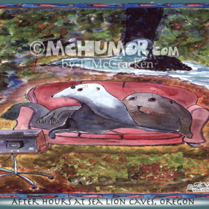 8013H Sea Lion Cartoon1