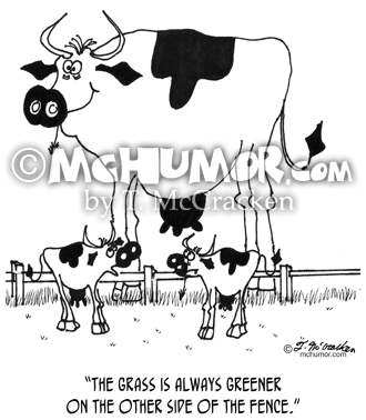 Cow Cartoon 3372