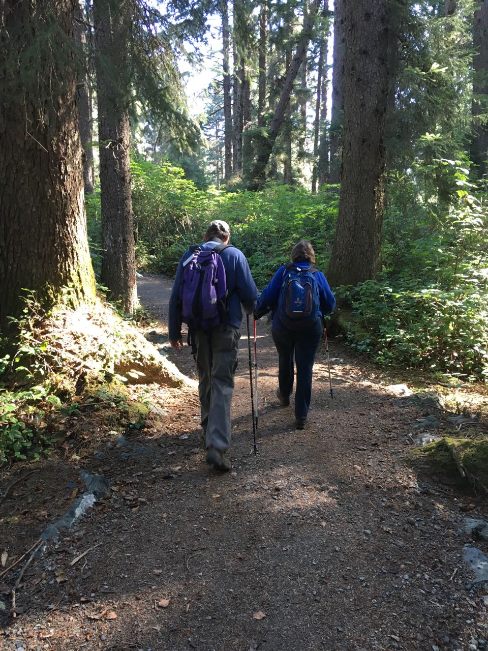Redwoods 2017 10 01 122 Of 244
