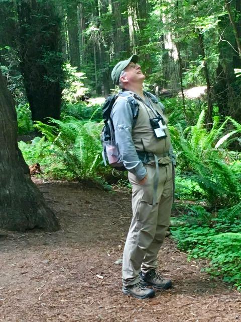 2018 06 14 Redwoods 5